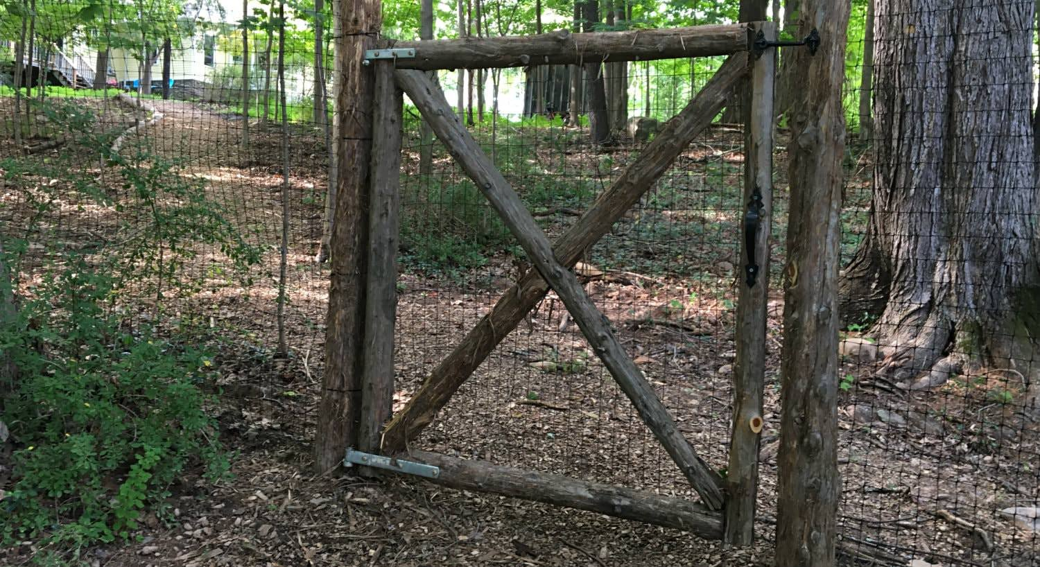 Rustic wood and wire fence and gate surrounded by trees, greenery and a path