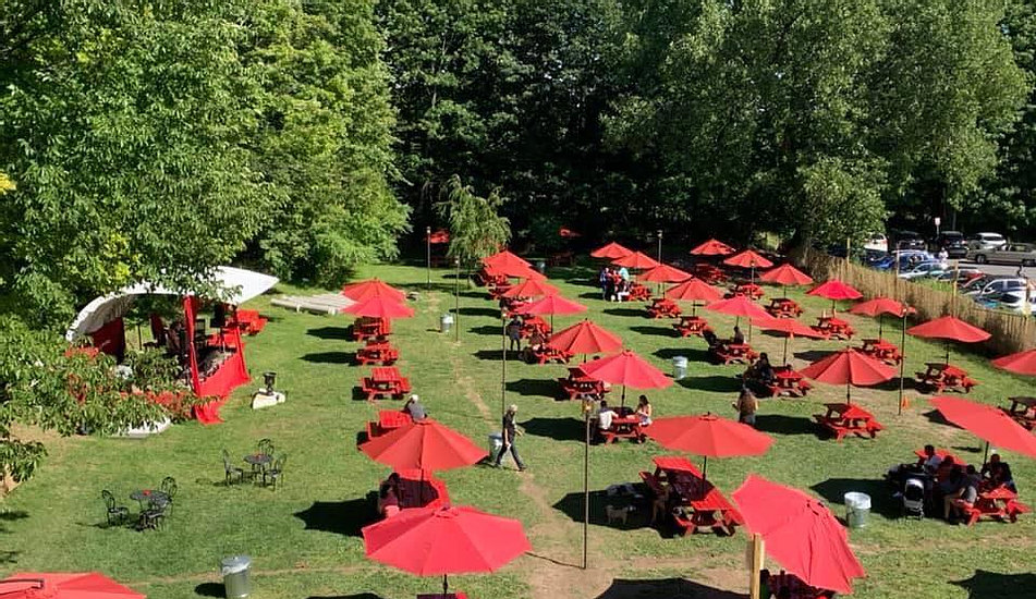 Looking down on a few rows of red umbrellas above wooden picnic table on a green grassy lawn.