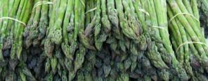 asparagus-woodstock-farm-festival