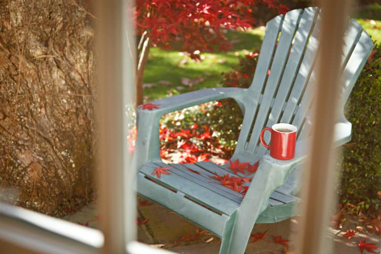 View through window of light blue Adirondack chair with red mug surrounded by red Chinese maple, shrubs and green grass