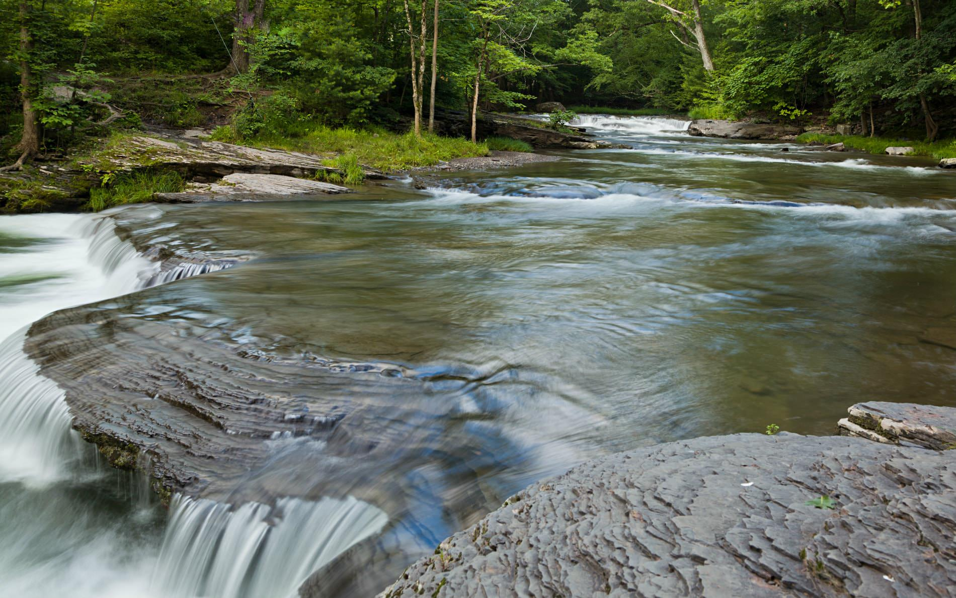 Flowing, rippling stream cascading over a rocky ledge surrounded by lush green woods